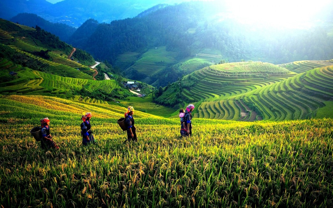 19D-18N Vietnam Panorama