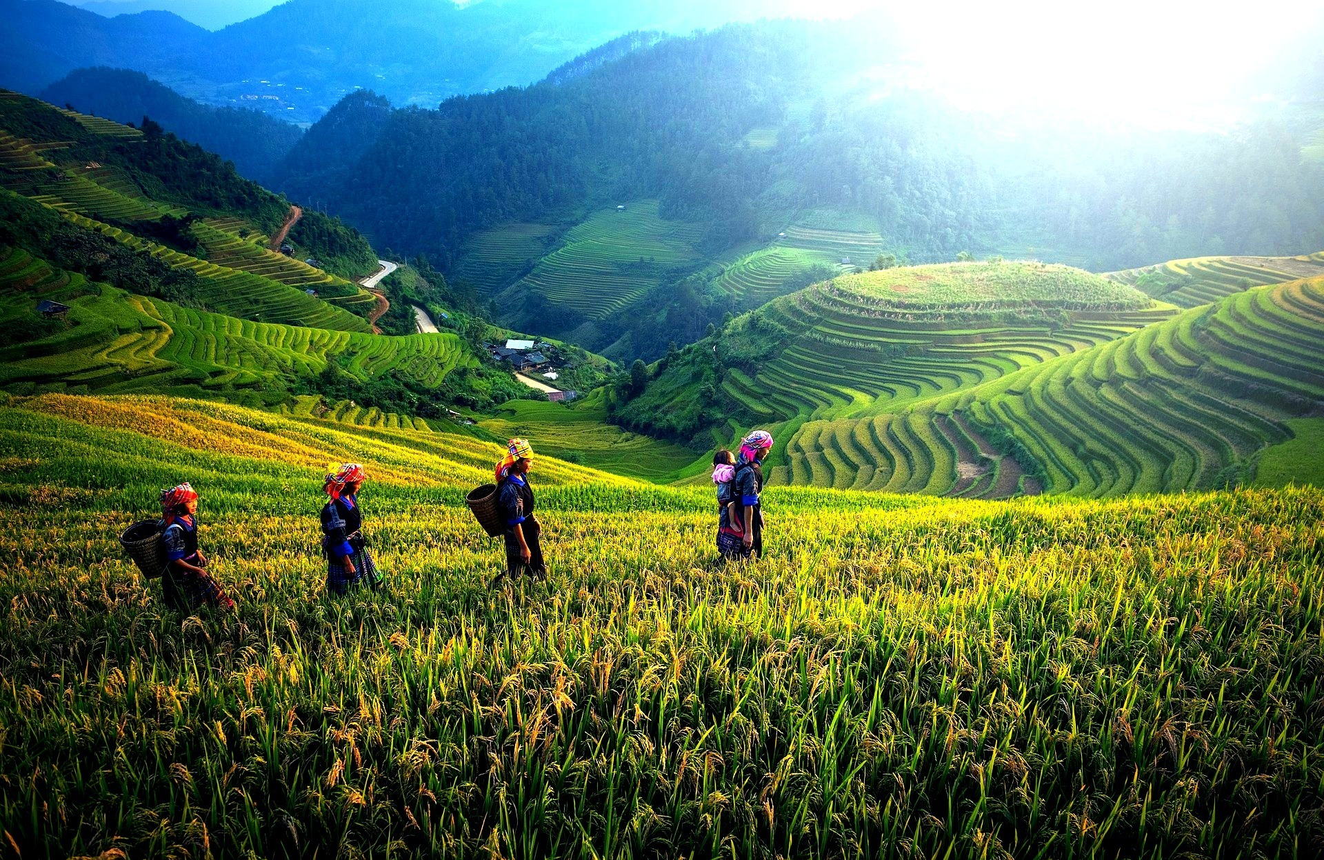19D-18N Vietnam Panorama | Charms Of Indochina, Travel in Indochina